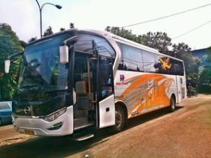 bus-bandara-depok-soekarno-hatta.png